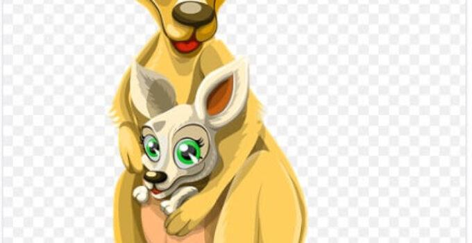 El pequeño canguro