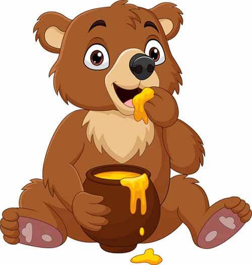 Cuento del oso comiendo miel.