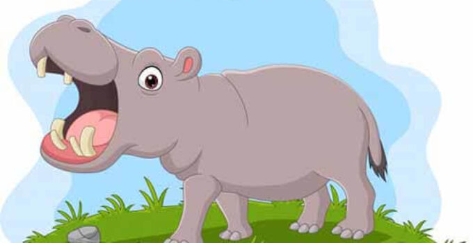 El lomo del hipopótamo tamba