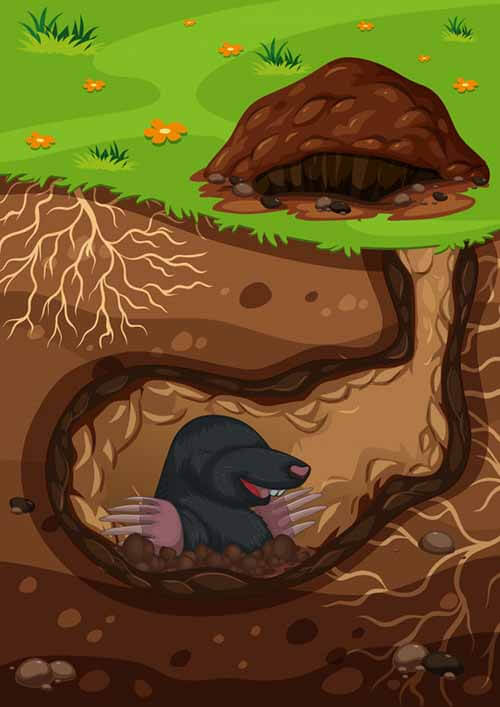 El cuento infantil de los topos.