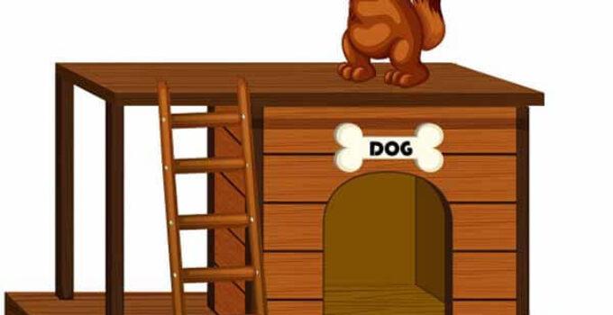 El perro y su cometa.